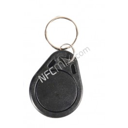 Combi klíčenka TK4100+Mifare 1K